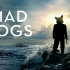 Amazon officially canceled Mad Dogs season 2