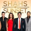 Bravo is yet to renew Shahs of Sunset for season 6