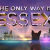ITVBe has officially renewed The Only Way is Essex for series 20