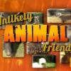 National Geographic is yet to renew Unlikely Animal Friends for season 4