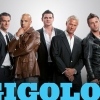 Showtime is yet to renew Gigolos for season 7