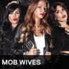 VH1 officially canceled Mob Wives season 7