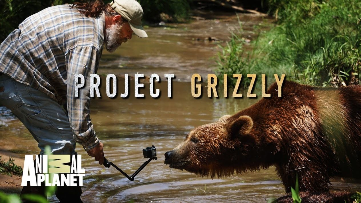 ���� - Animal Planet is yet to renew Project Grizzly for season 2