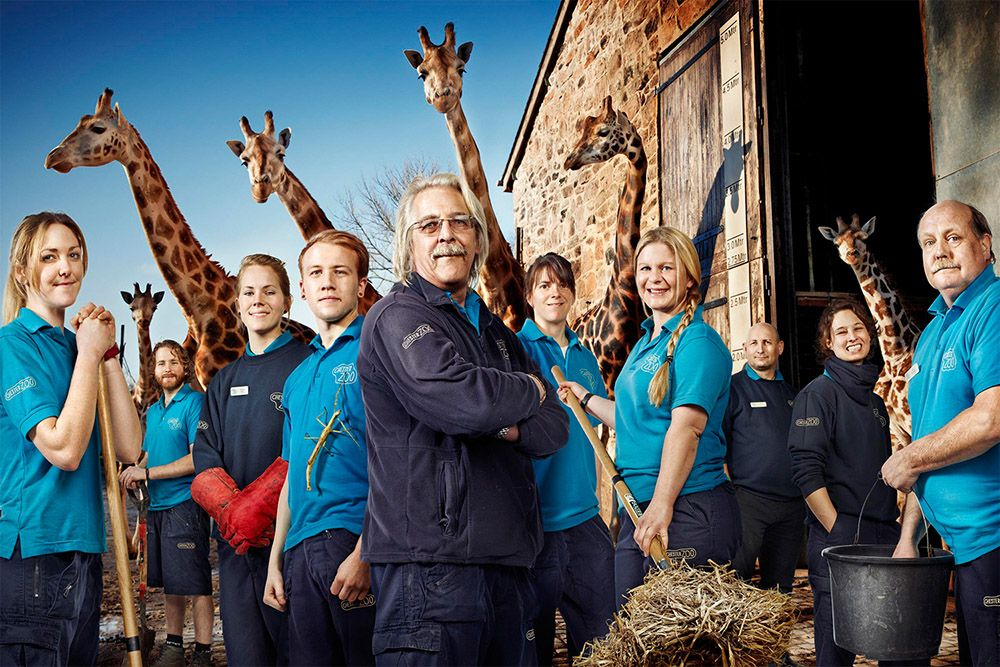 ���� - Channel 4 is yet to renew The Secret Life of the Zoo for series 3